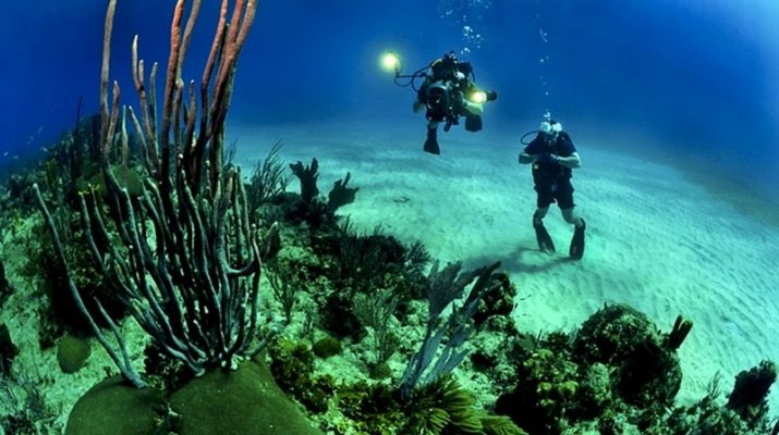ocean-underwater